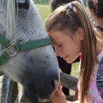 Tierliebe - ein Mädchen hält ihre Stirn an die Stirn eines Pferdes